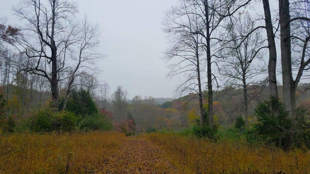 Tsula Adohi Trail